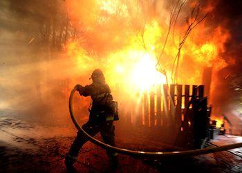 Калифорнийский огонь и жизнь